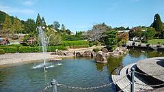 公園 花 みどり 『花みどり公園』彼岸花の群生が予想以上!!(広島市安佐北区)