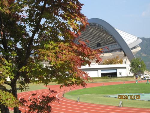 もみじ 2009-10-28
